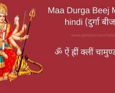 Maa Durga Beej Mantra in hindi
