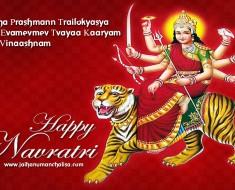 Jai Durga Maa picture
