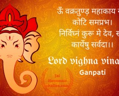 Lord Vighna Vinashak Photo & picture